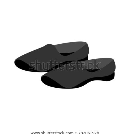 Chinese slippers for Wushu. Sports shoes. Vector illustration Stock photo © popaukropa