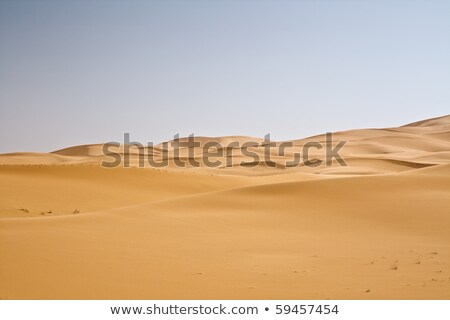 Sand Desert with Dunes in Marocco, merzouga Stock photo © JanPietruszka