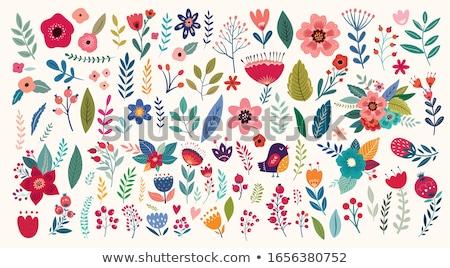 coleção · flores · colagem · diferente · flores · da · primavera · floral - foto stock © pressmaster