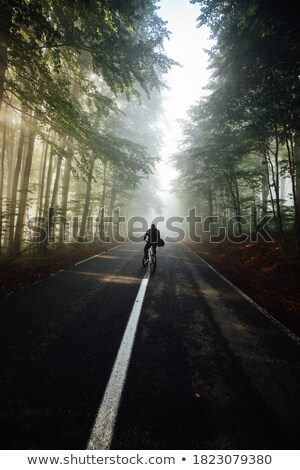 Man in sunlit forest scenery Stock photo © IS2