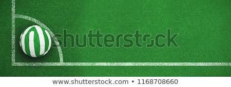 Futball Nigéria színek futballpálya terv futball Stock fotó © wavebreak_media