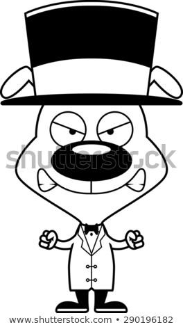 Cartoon Angry Puppy Top Hat Stock photo © cthoman
