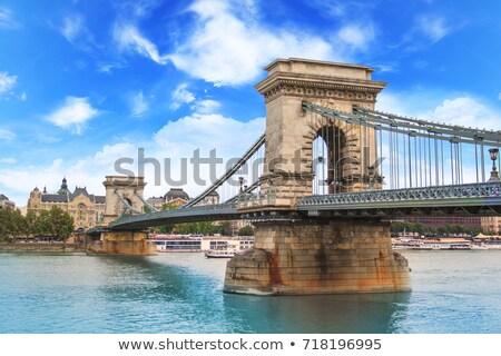 éclairage chaîne pont Budapest nuageux Photo stock © Givaga