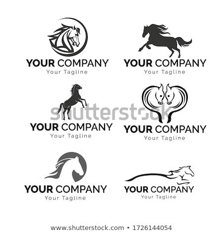 Negro caballo ejecutando vector logo icono Foto stock © blaskorizov