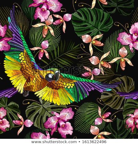 Papagáj dzsungel sablon illusztráció fa erdő Stock fotó © bluering
