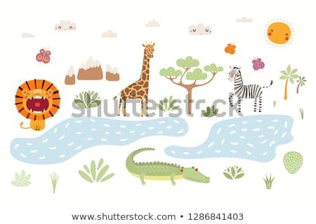 シーン キリン 川 実例 背景 ライオン ストックフォト © colematt
