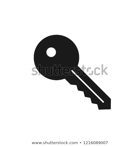 красочный ключевые вектора икона иллюстрация символ Сток-фото © blaskorizov