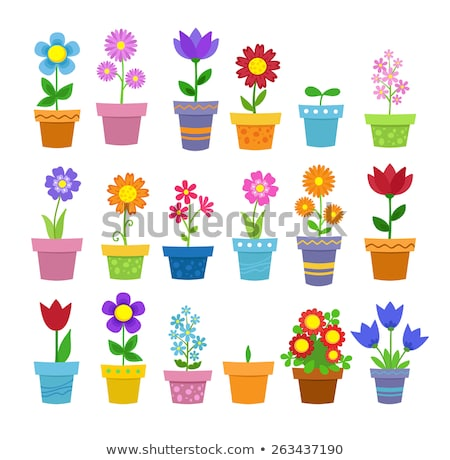 flower in pot clip art vector illustration icon Stock photo © blaskorizov