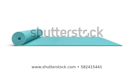 Mavi yarım yoga mat 3D 3d render Stok fotoğraf © djmilic