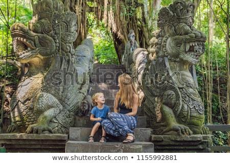 Anya fiú erdő majom Bali Indonézia Stock fotó © galitskaya