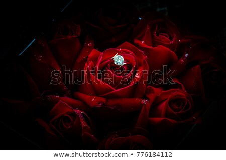 Marry Me! - diamond ring and roses Stock photo © Eireann