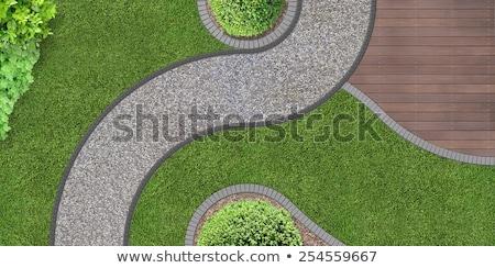 a garden aerial view border stock photo © bluering