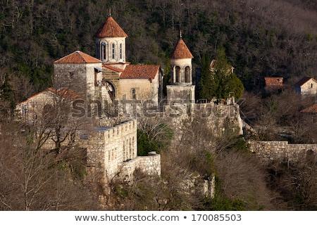 Manastır Georgia görmek Bina dağ tarih Stok fotoğraf © boggy
