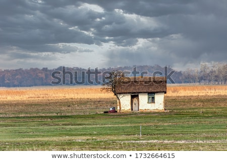 Ev gün batımı park Macaristan ünlü Stok fotoğraf © artush