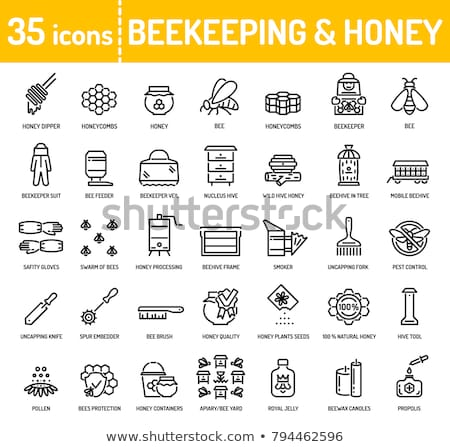 Apiary Beekeeping on Nature, Beekeeper with Honey Stock photo © robuart