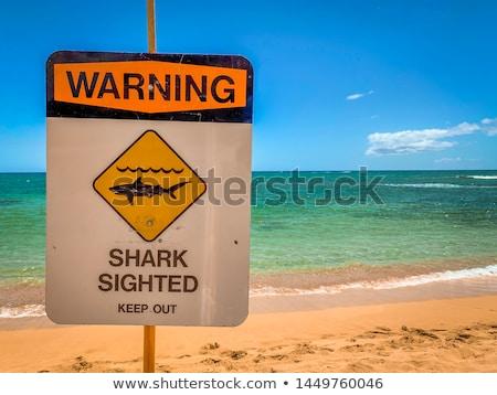 Cápa figyelmeztető jel vigyázat cápák feliratozás tengerpart Stock fotó © Lightsource