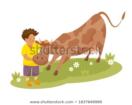 animal Cow boy_Mental Stock photo © toyotoyo