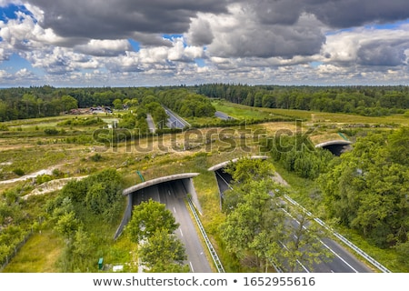 highway scenery in the Netherlands Stock photo © prill