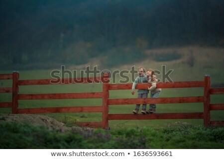 два братья мальчика сидеть ранчо Сток-фото © ElenaBatkova