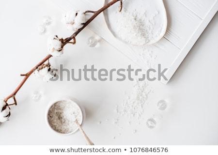 Sea Salt Bath Scrub Stock photo © klsbear