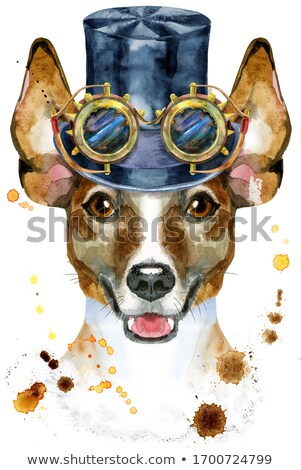 Aquarel portret jack russell terrier hoed cilinder steampunk Stockfoto © Natalia_1947