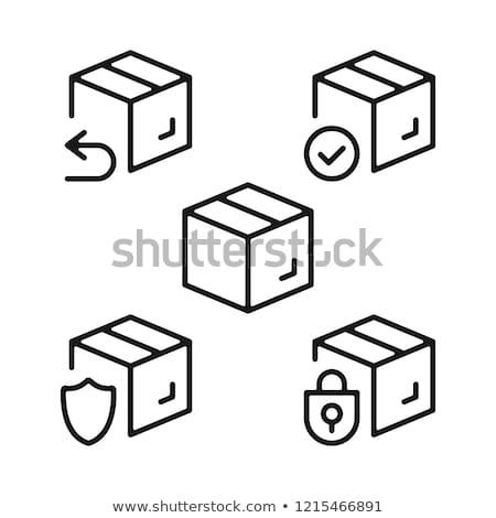 Pacote ícone vetor ilustração Foto stock © pikepicture