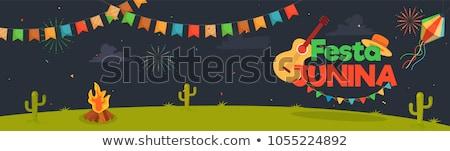 Brasilien Feier Festival abstrakten Flagge Plakat Stock foto © SArts
