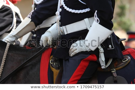 Mounted police Stock photo © pixpack