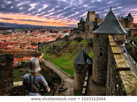towers of carcassonne stock photo © razvanphotography