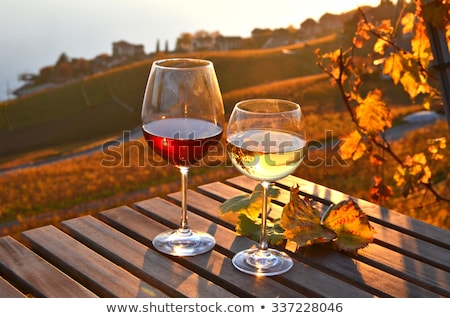 Stock photo: couple with wine glass in the field