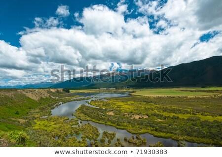 Waiau river wetland South New Zealand Stock photo © 3523studio