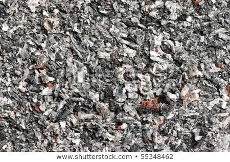 Macro of cigarette ash in the ashtray Stock photo © deymos
