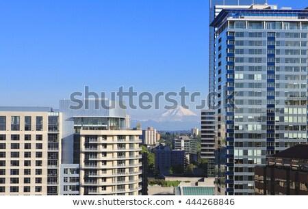 Seattle centrum południe jezioro Unii widoku Zdjęcia stock © iriana88w