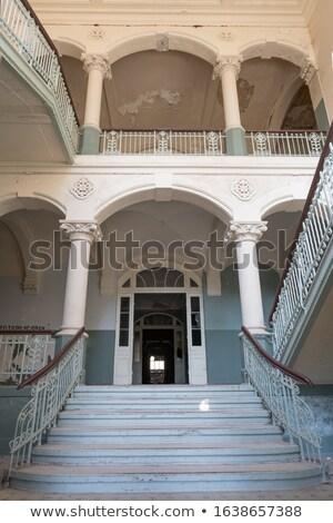 márvány · lépcsőház · lépcsősor · luxus · előcsarnok · fal - stock fotó © sirylok
