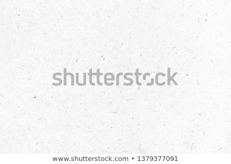 Gray paper background. Stock photo © borysshevchuk