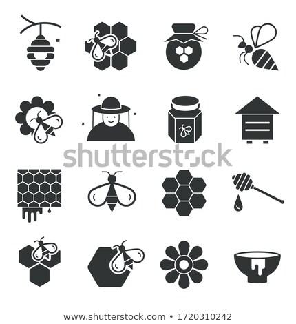Méhsejt kaptár kép méhkaptár terv méh Stock fotó © cteconsulting