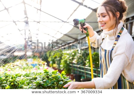 mujer · florista · de · trabajo · flores · rosas · mercado - foto stock © kzenon
