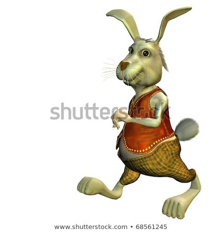 running hare   3d render stock photo © elenarts