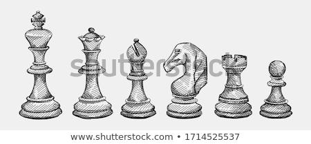 Vintage chess queen background, vector illustration Stock photo © carodi