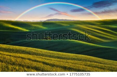 panoramisch · hemels · wolken · dag · hoog - stockfoto © mycola
