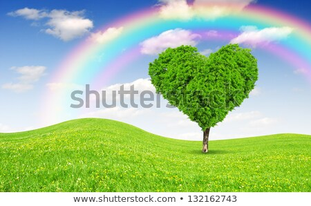 heart shaped cloud above green summer field landscape stock photo © photocreo