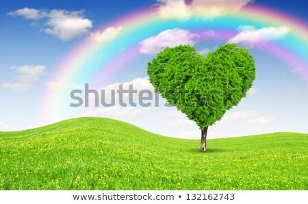 сердце облаке зеленый лет Сток-фото © photocreo