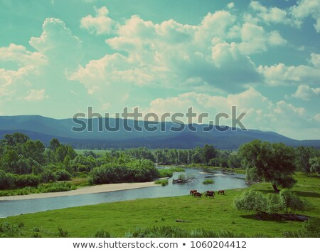 landscape with river mountains and horses   vintage retro style stock photo © mikko
