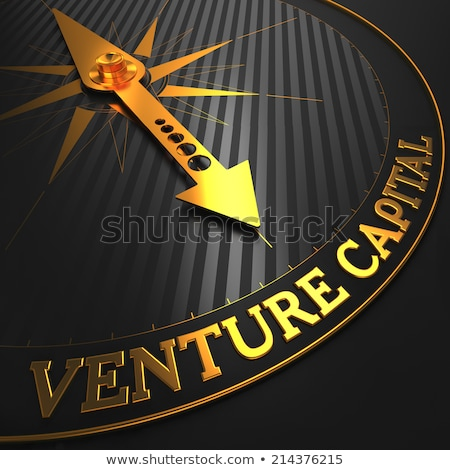 Venture Capital - Golden Compass Needle. Stock photo © tashatuvango