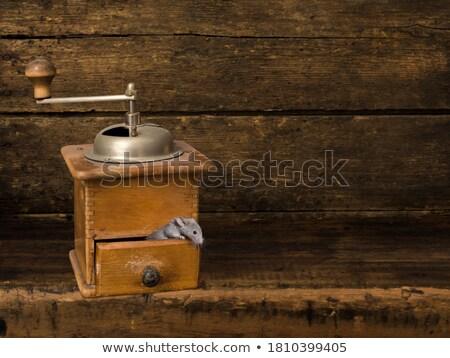 マウス コーヒー グラインダー 1泊 冒険 ストックフォト © tatiana3337