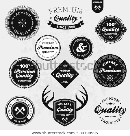 set of vintage hunting labels and design elements stock photo © mcherevan