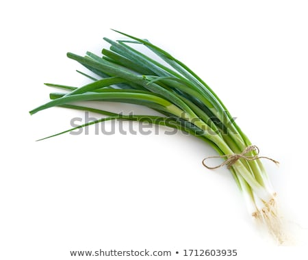 Fresh Organic spring onion Stock photo © Klinker