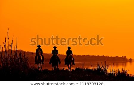 пару верхом пустыне иллюстрация природы фермы Сток-фото © adrenalina