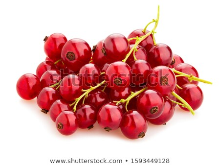 Ripe red-currents. stock photo © EFischen