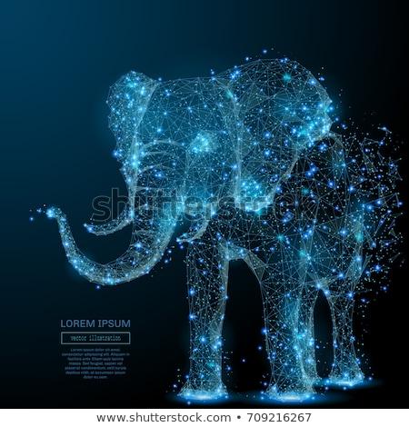 象 3D 低い ポリゴン 白 ストックフォト © teerawit